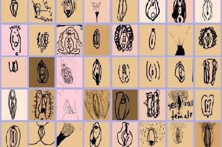 Un diario inglés crea una aplicación para dibujar vaginas