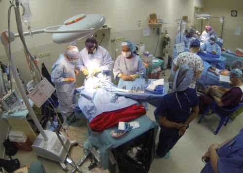 Bolivia: Plantean modificar reglamento de Ley 1716 para donación de órganos