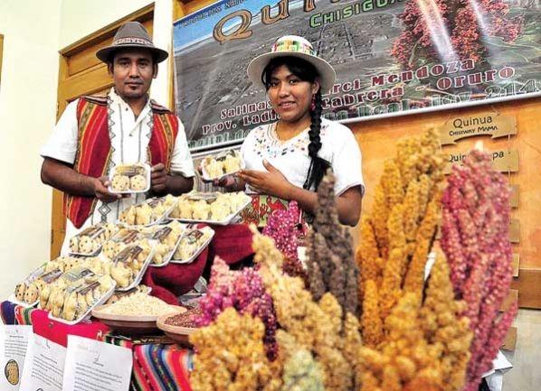 Bolivia: Indígena rescata la ajara, más rica que la quinua
