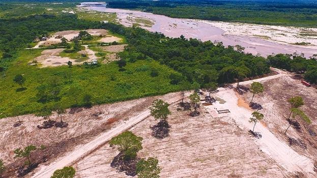 Tala dañó bosque de más de 20 años y afectó a la fauna