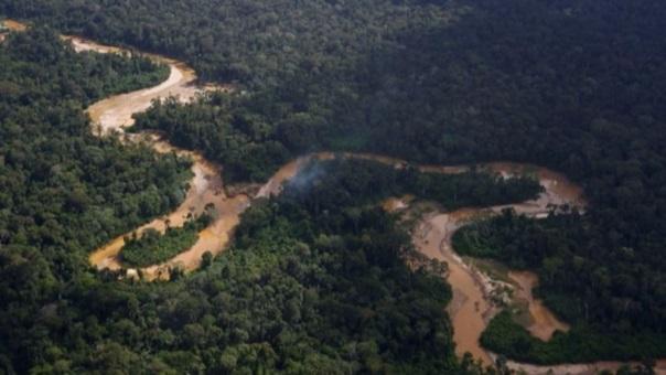 Casi 8,000 kilómetros de bosques se perdieron en la Amazonía de Brasil