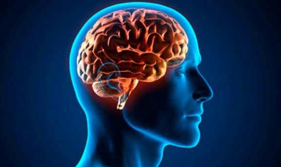Científicos: El nivel de ingresos de una persona está relacionado ...
